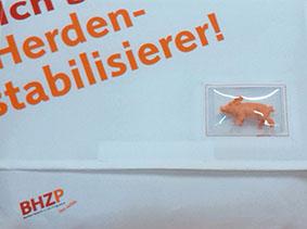 Kunde: BHZP GmbH detail